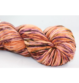 Knitted Wit Sock, Arches National Park