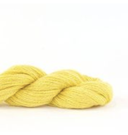 Shibui Pebble, Canary