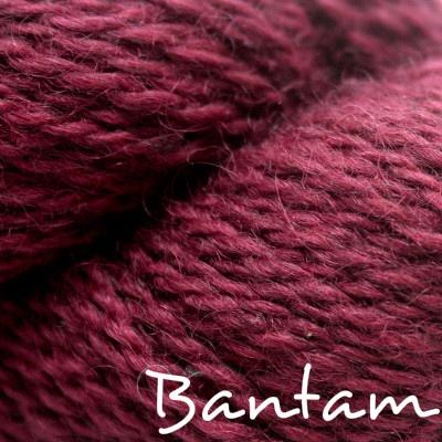 Baa Ram Ewe Dovestone DK, Bantam