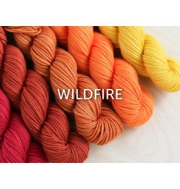 Sweet Georgia Party of 5 - Tough Love Sock, Wildfire (Retired Color)