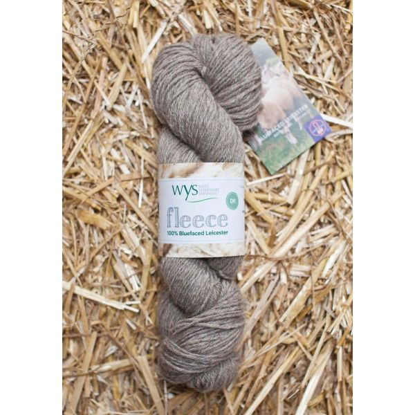 West Yorkshire Spinners BFL DK, Light Brown