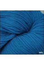 Cascade Yarns 220, Cyan Blue Color 8891