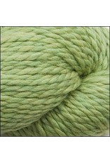 Cascade Yarns 128 Superwash, Celery Color 905