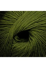 Cascade Yarns S/220 Superwash, Sage Color 888