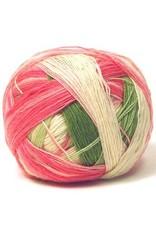 Schoppel Wolle Zauberball Color 2079