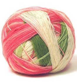 Schoppel Wolle Zauberball Color 2079