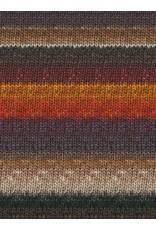 Noro Silk Garden Sock, Burnt Orange, Wine, Greys, Taupe color 349