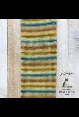 Biscotte & Cie Bis-Sock, Lichen