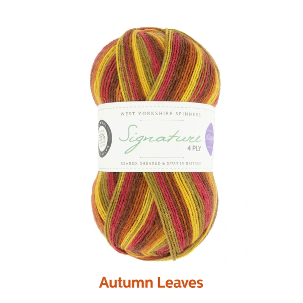 West Yorkshire Spinners Signature 4ply, Autumn Leaves 0885