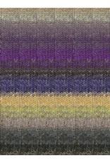 Noro Silk Garden Sock, Laredo Color 452