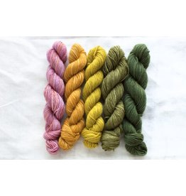 Manos del Uruguay Fino Mini Skein Set, Dorthea