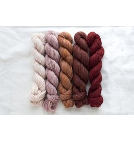 Manos del Uruguay Fino Mini Skein Set, Eleanor