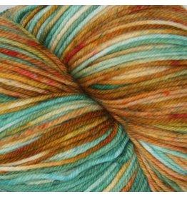 Knitted Wit Sock, Mesa Verde National Park