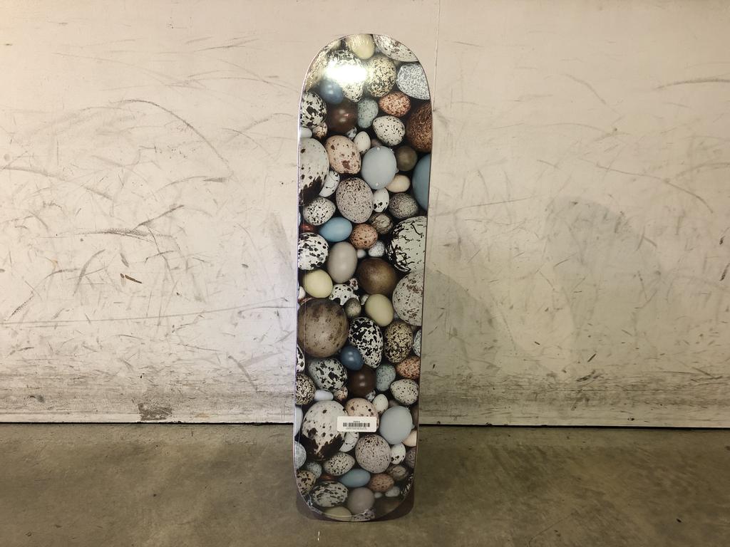 Alltimers Skateboard 8 - Eggs