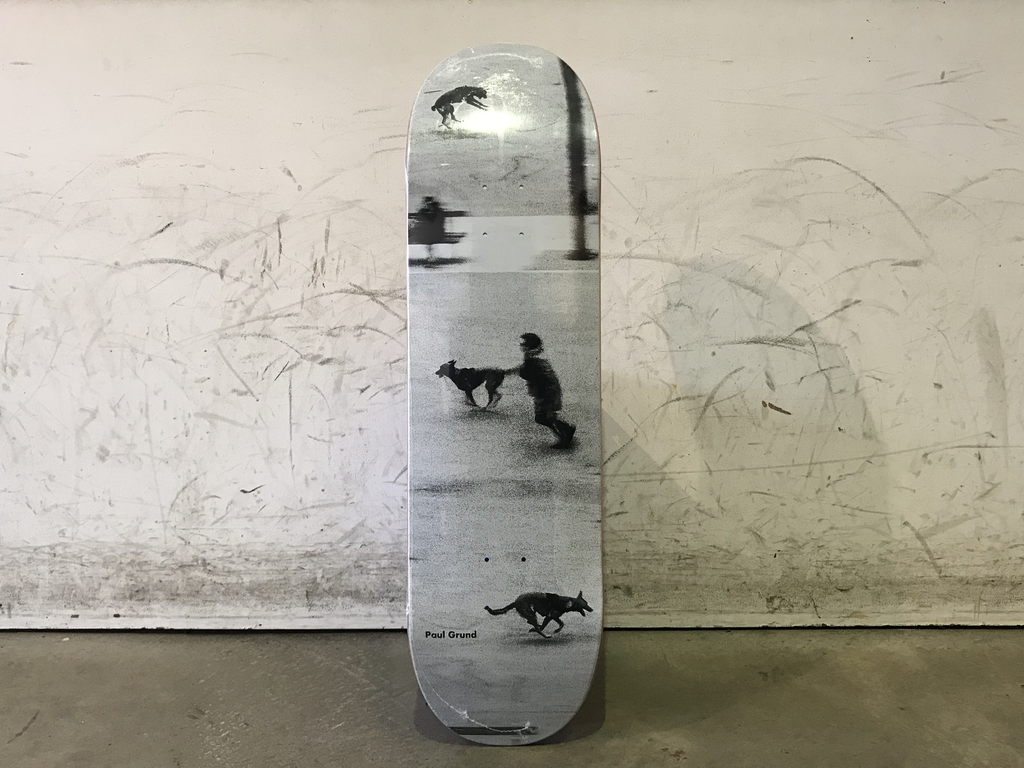 Polar Skateboard 8.75 - Grund Dog Studies