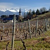 """Savoie """"Apremont"""" Blanc  2013 Le Cellier du Palais 750ml"""