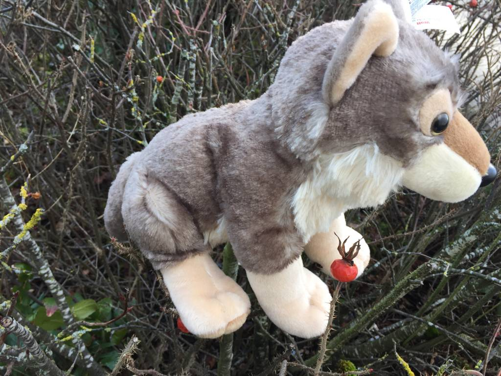Stuffed animal wolf