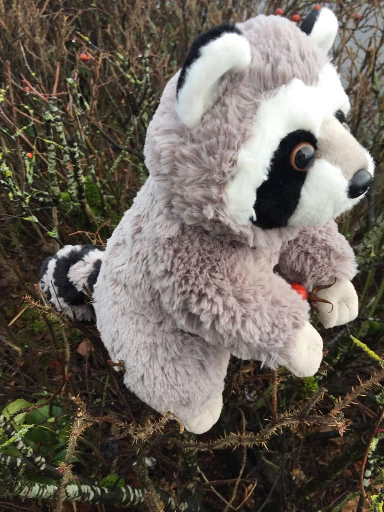 Stuffed animal raccoon