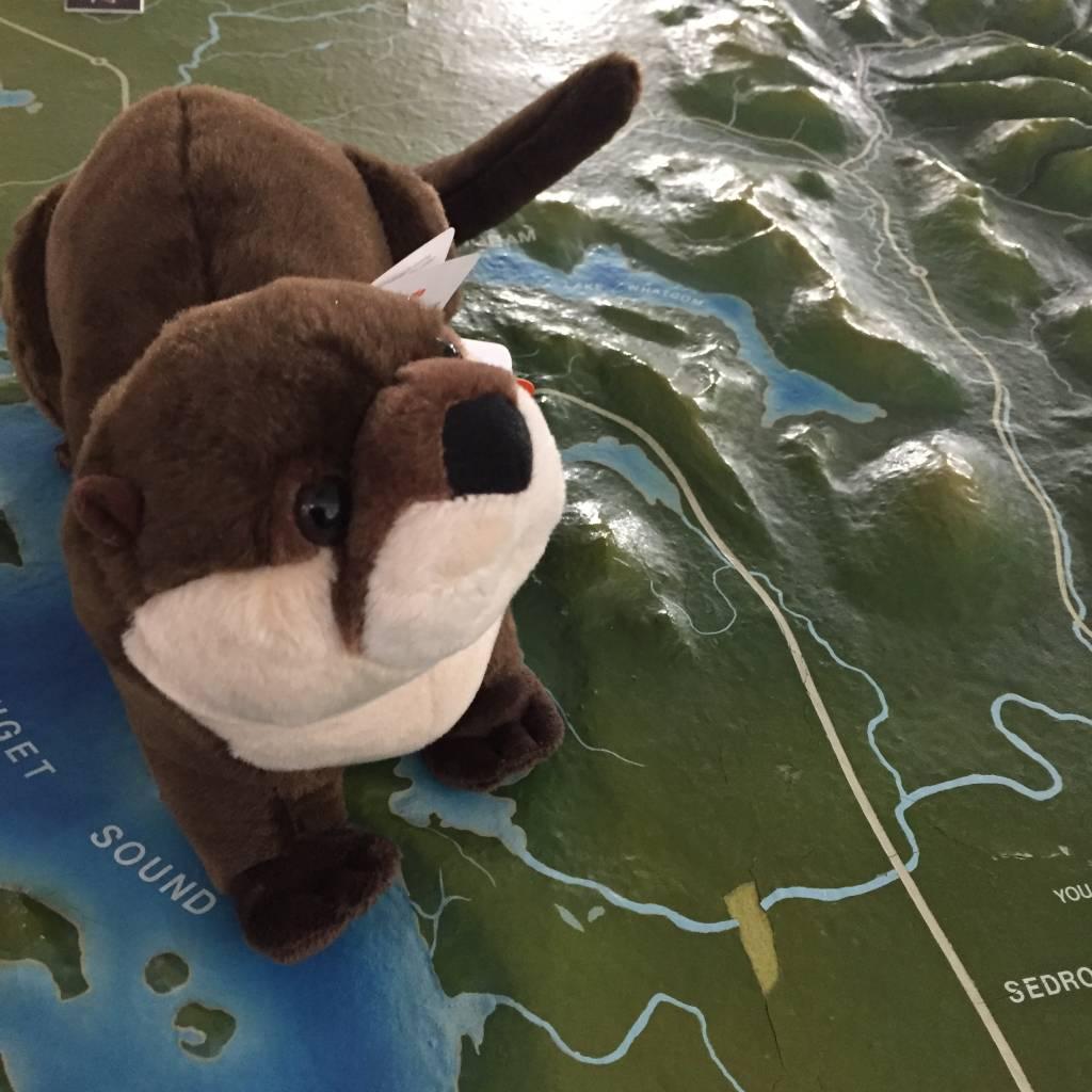Stuffed animal river otter