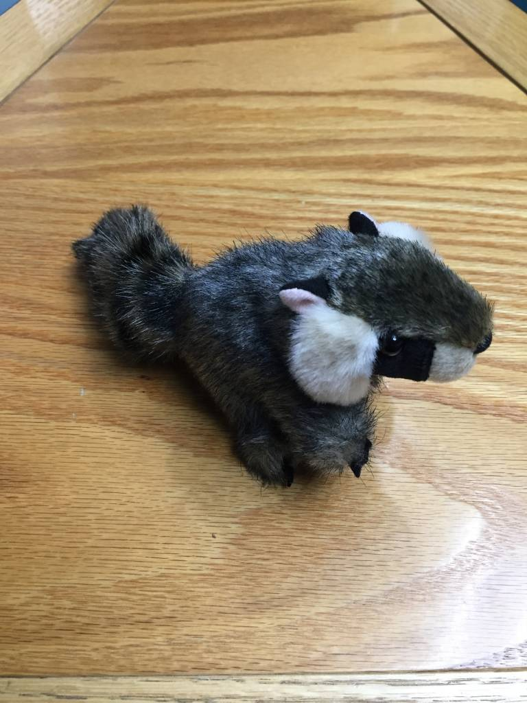 Finger puppet raccoon