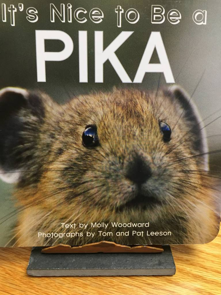 Nice to be a Pika