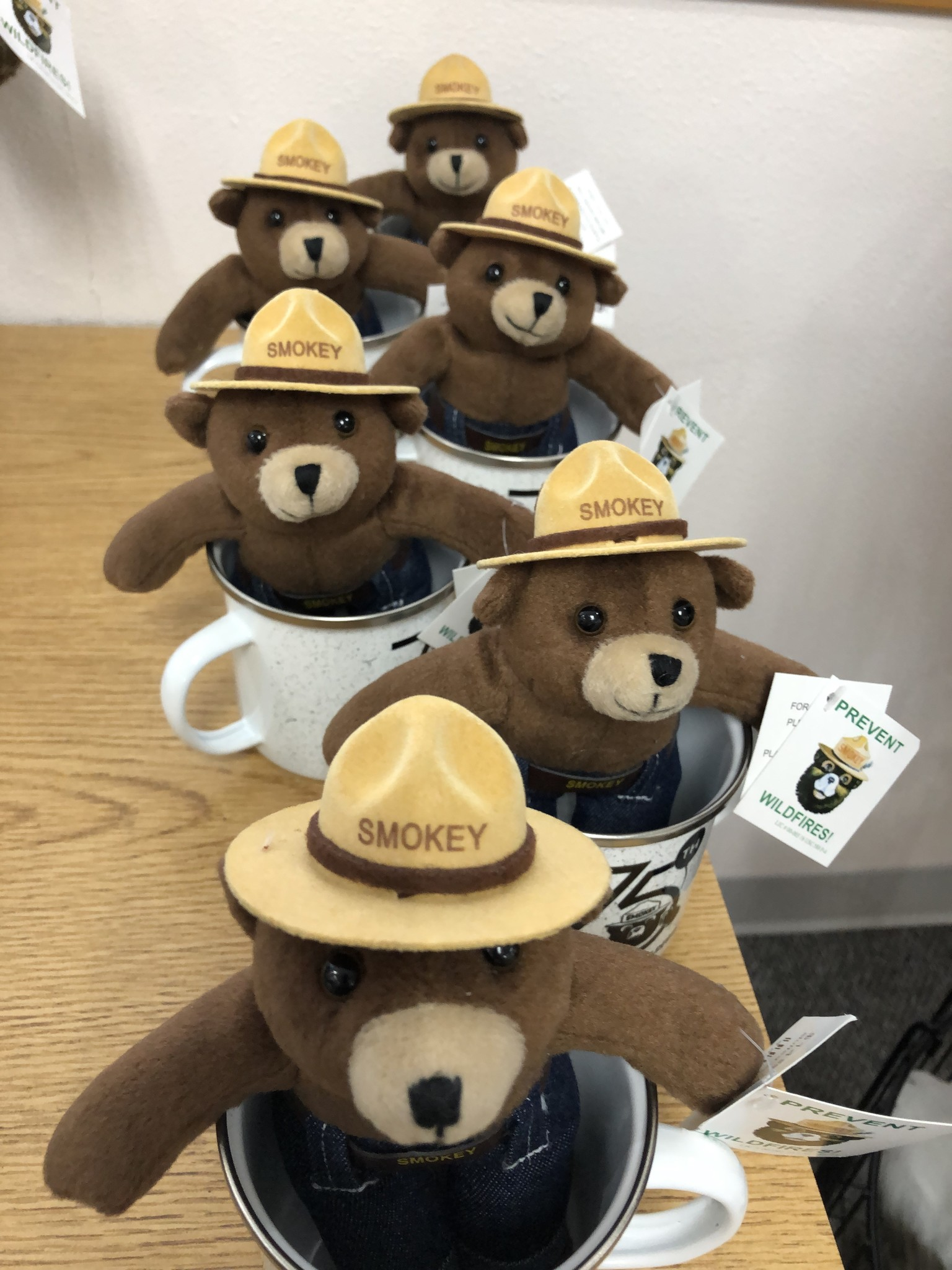 Smokey stuffed bear
