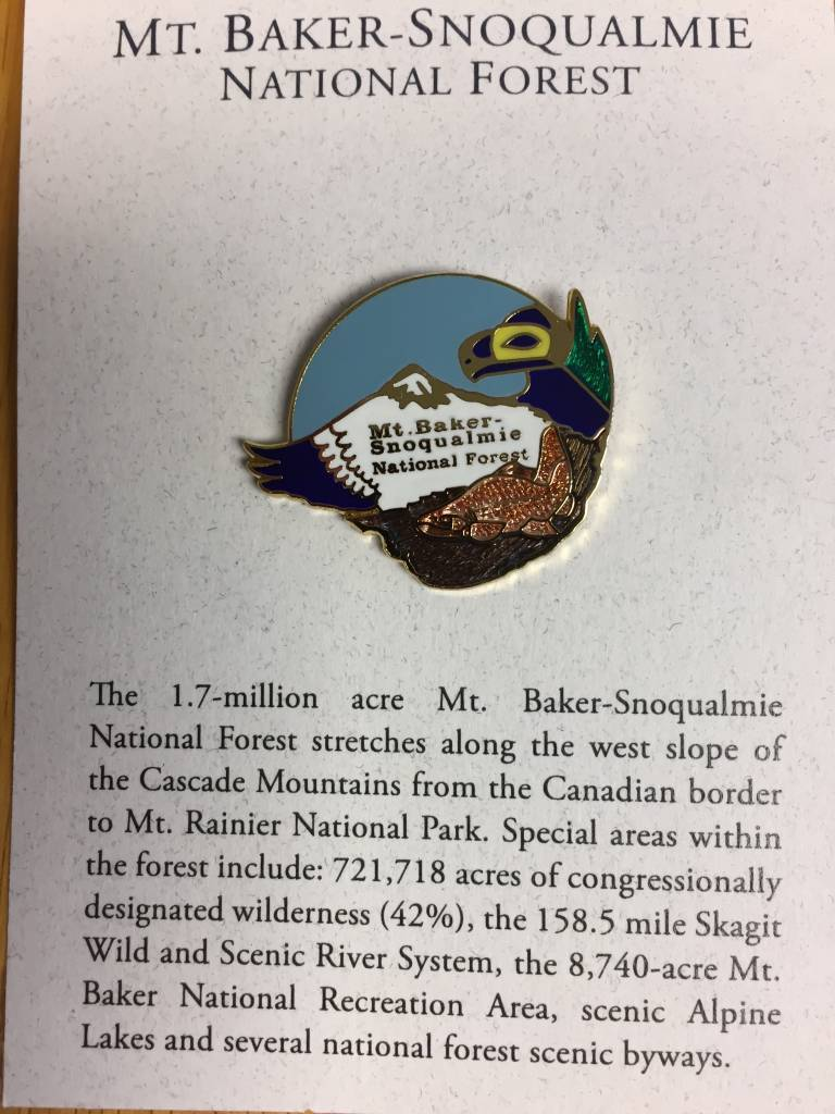 Mt Baker Snoqualmie Pin