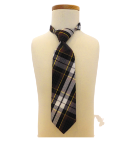 Assumption Plaid Tie