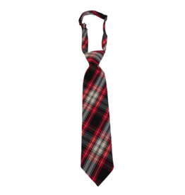 St. Anthony School Ties