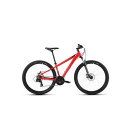 Raleigh 2020 Raleigh Talus 2 Red Medium/17 (29)