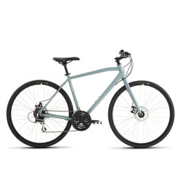 Raleigh Raleigh Cadent 2 Large/19 Grey