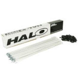 Halo Aura Spokes Box of 100