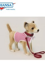 Chihuahua With Pink Coat And Leash