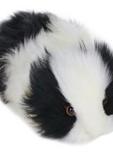 "Guinea Pig - Black & White 9"""