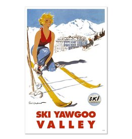 Frog & Toad Design Ski Yawgoo Valley Print