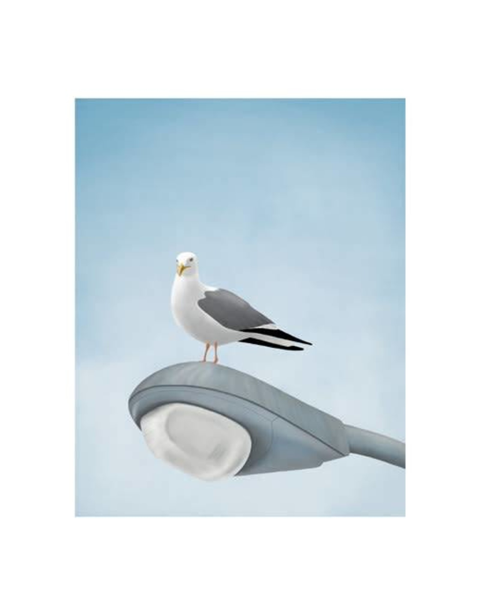 Alayna Paquette Seagull Lampost Print
