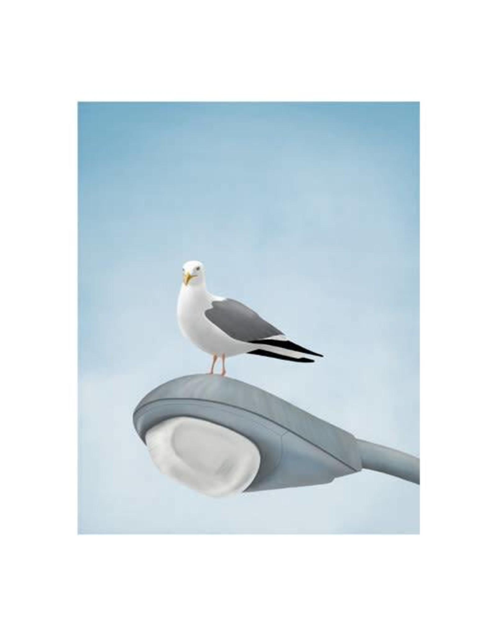 Seagull Lampost Print