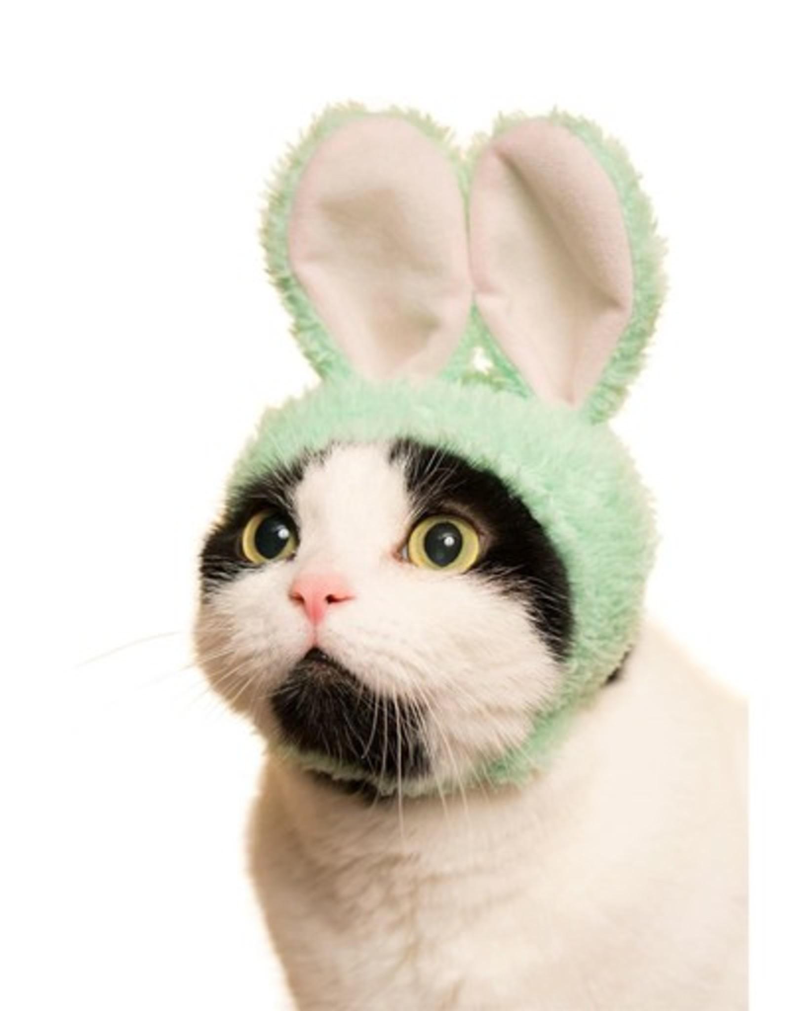 Rabbit Cat Cap Blind Box