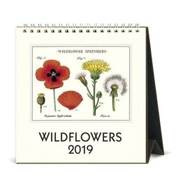 Cavallini 2019 Desk Calendar : Wildflowers