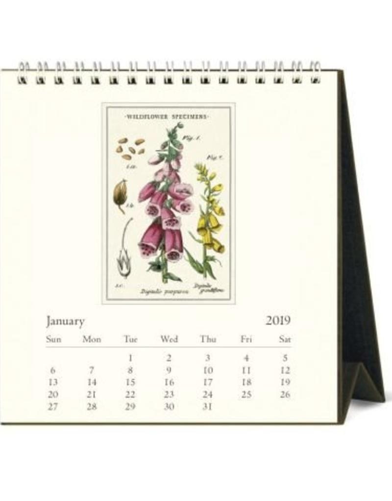 Cavallini 2019 Desk Calendar : Wildflowers