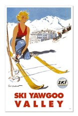 Frog & Toad Design Ski Yawgoo Valley Magnet