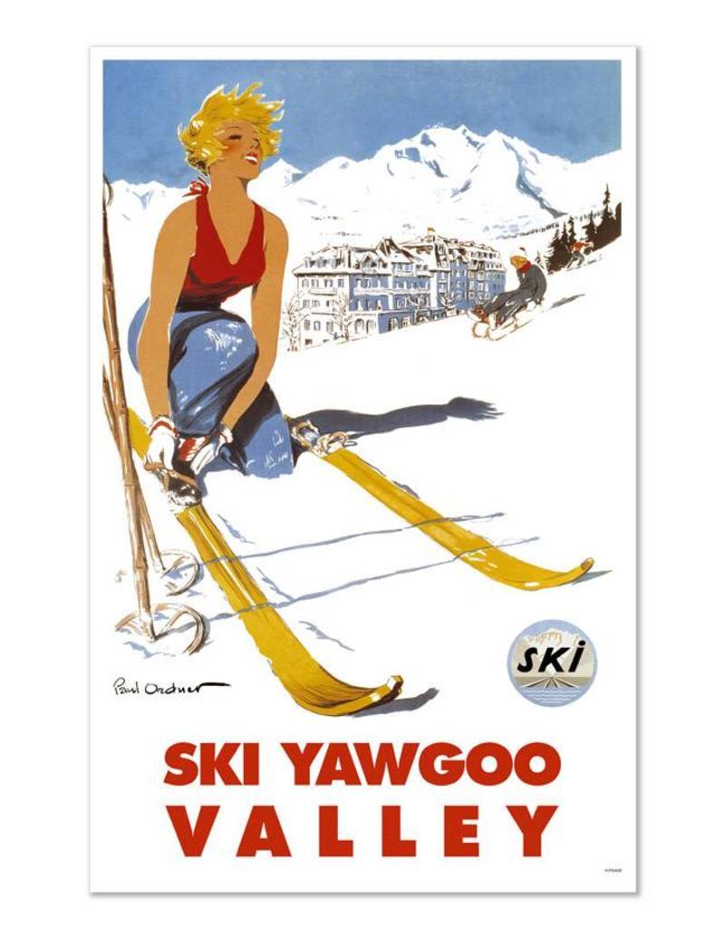 Frog & Toad Design Ski Yawgoo Greeting Card