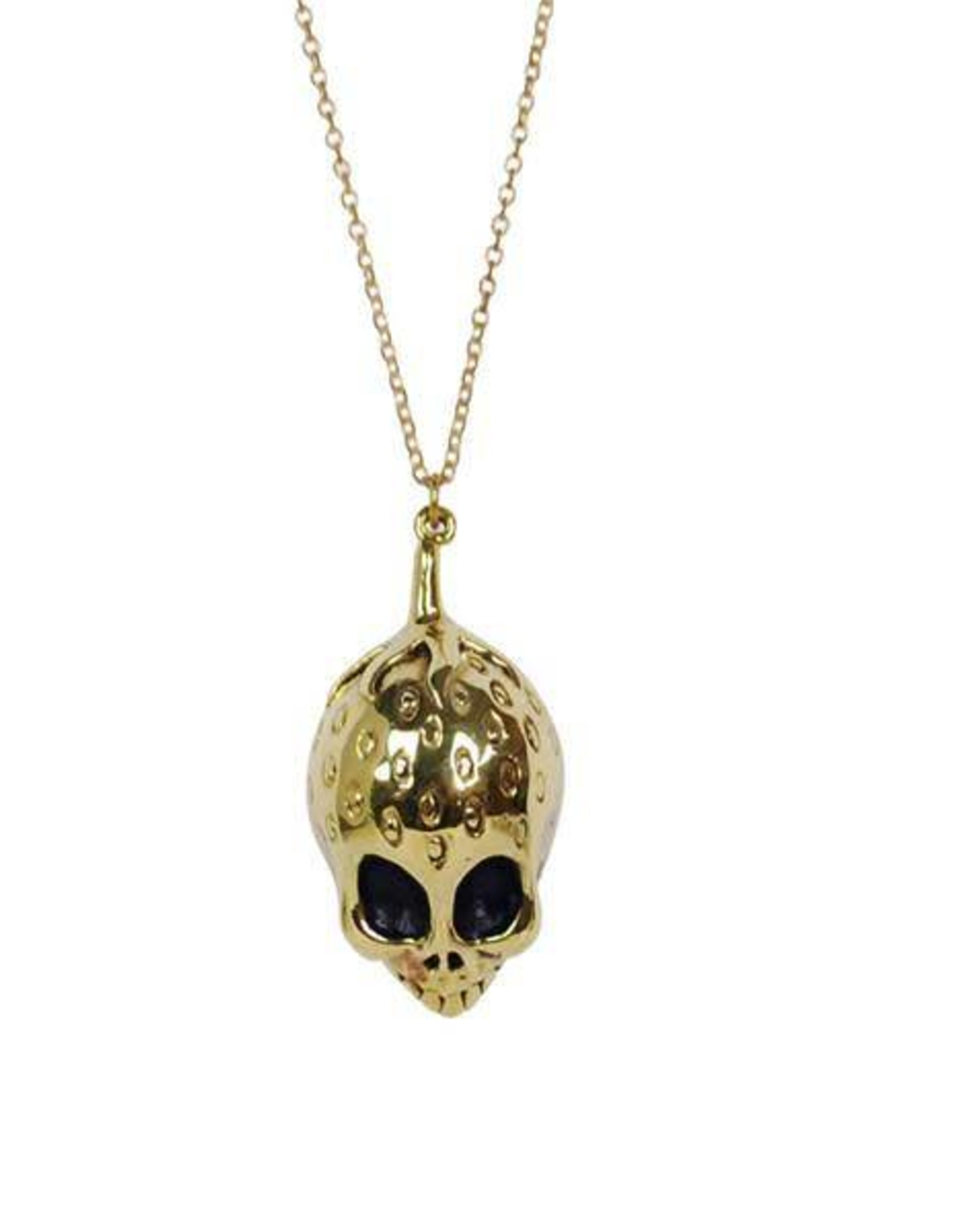 Strawberry Skull Necklace - Brass