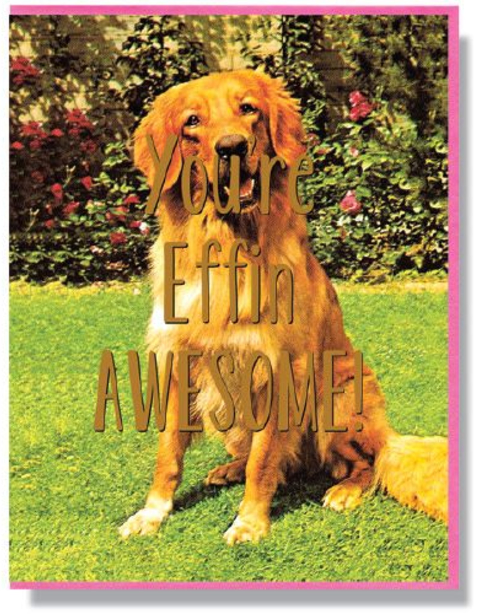 You're Effing Awesome Greeting Card