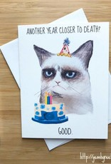 YeaOh Greetings Grumpy Cat Birthday Greeting Card