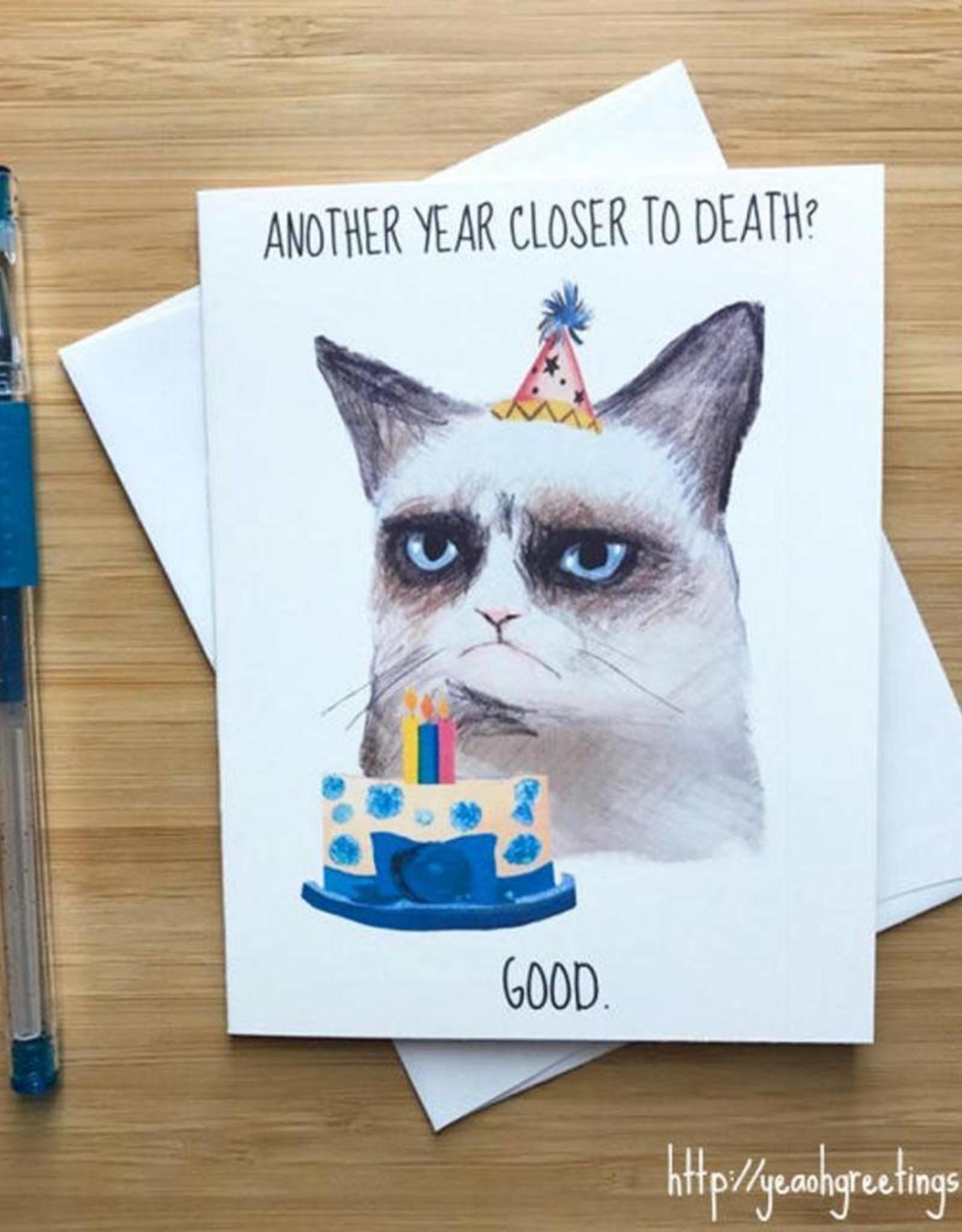 YeaOh Greetings Grumpy Cat Birthday Greeting Card