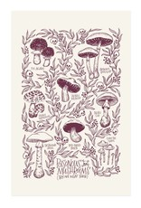 Frog & Toad Press Poisonous Mushrooms Print