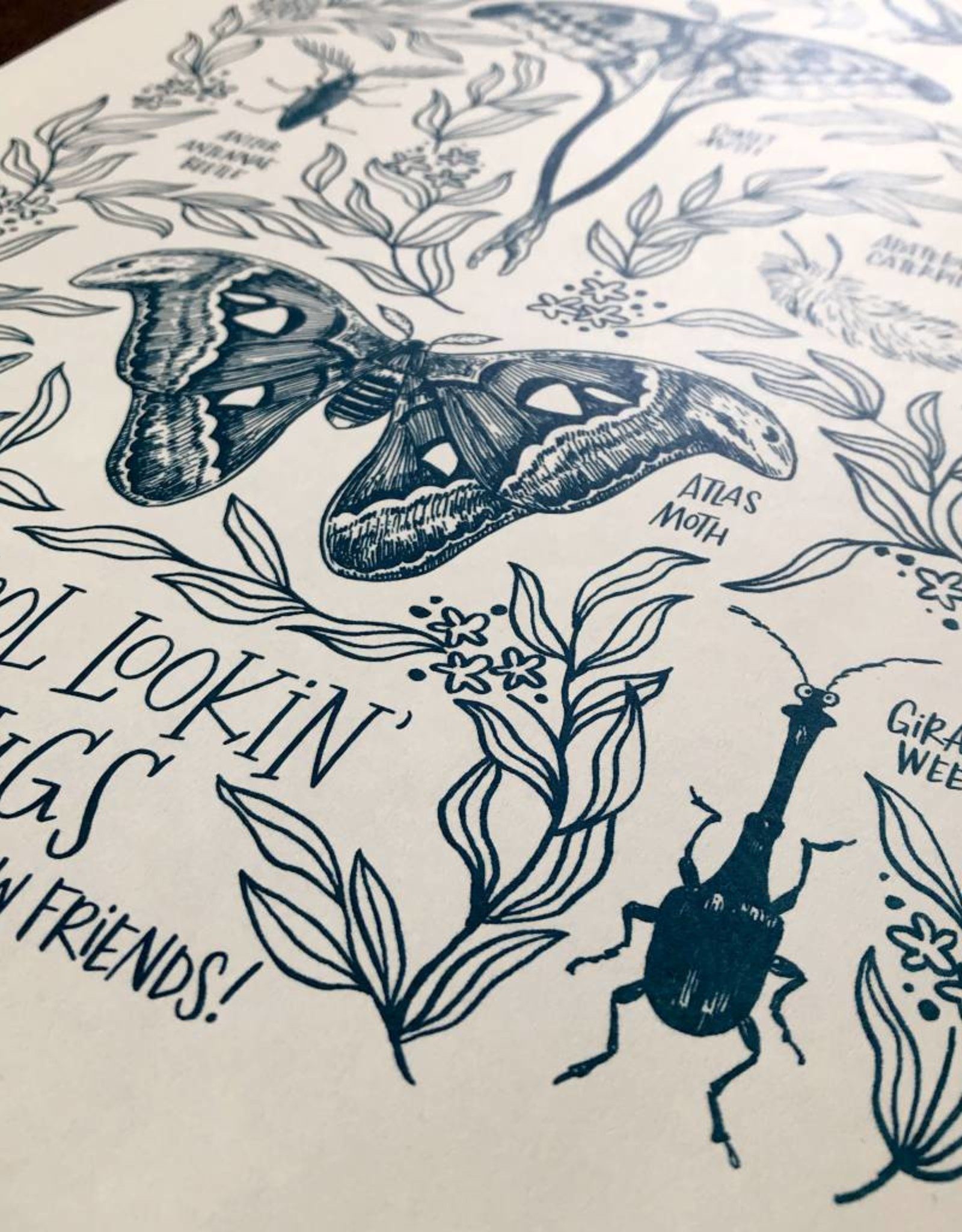 Frog & Toad Press Cool Lookin' Bugs Print