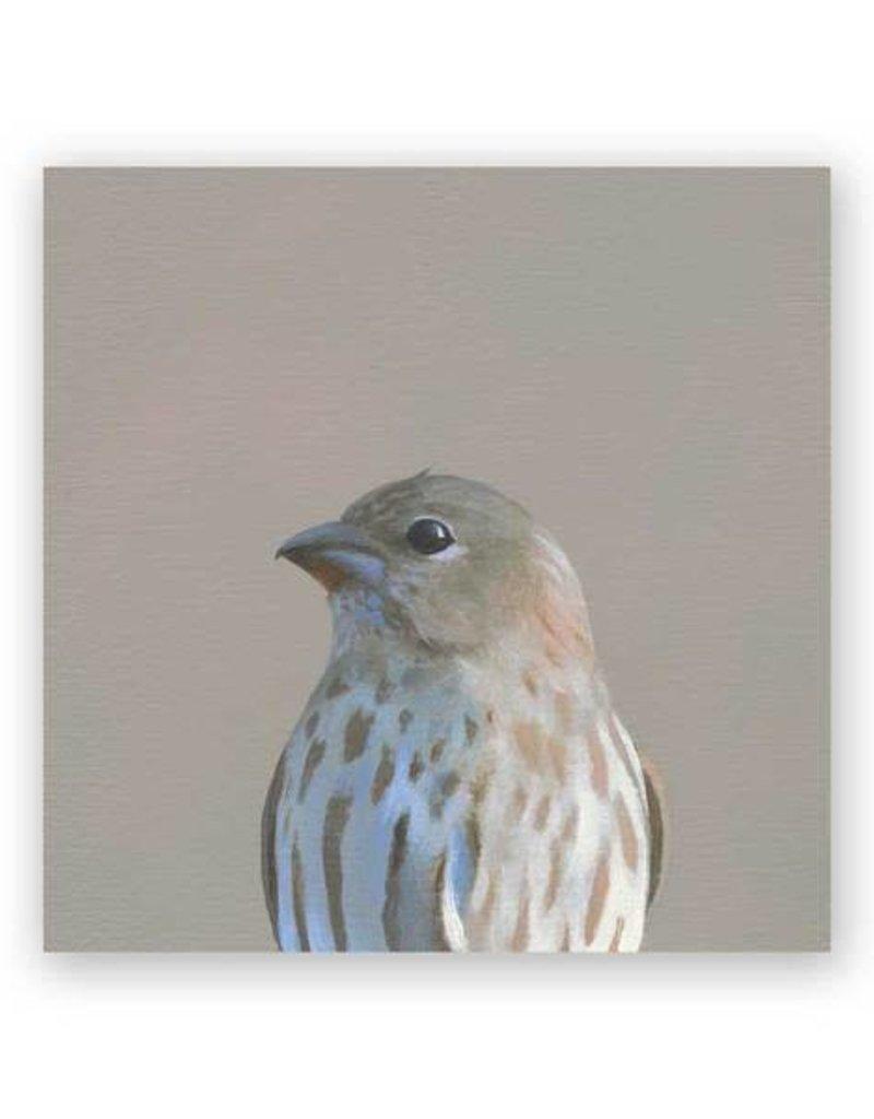 Mincing Mockingbird Wings on Wood - Finch