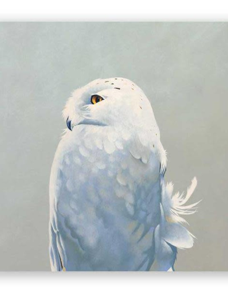 Mincing Mockingbird Wings on Wood - Snowy Owl